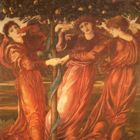 Hesperides, by Edward Burne-Jones